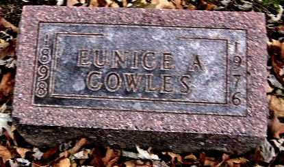 COWLES, EUNICE - Calhoun County, Michigan | EUNICE COWLES - Michigan Gravestone Photos