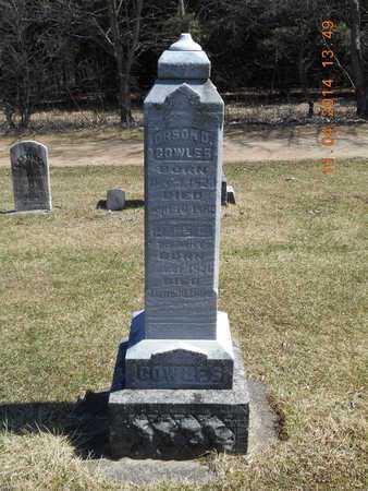COWLES, FAMILY - Calhoun County, Michigan   FAMILY COWLES - Michigan Gravestone Photos