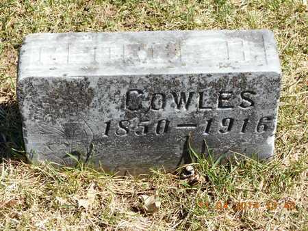 COWLES, GEORGE H. - Calhoun County, Michigan   GEORGE H. COWLES - Michigan Gravestone Photos