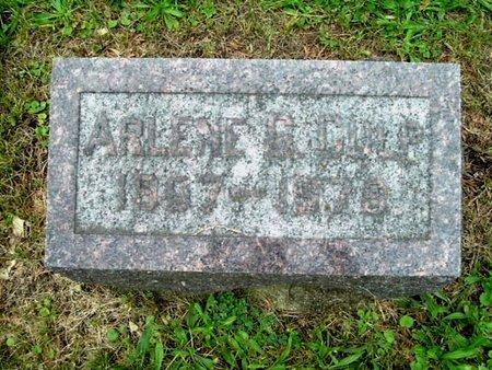 CULP, ARELENE - Calhoun County, Michigan | ARELENE CULP - Michigan Gravestone Photos