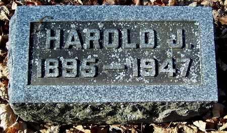 CUMMINGS, HAROLD J - Calhoun County, Michigan | HAROLD J CUMMINGS - Michigan Gravestone Photos