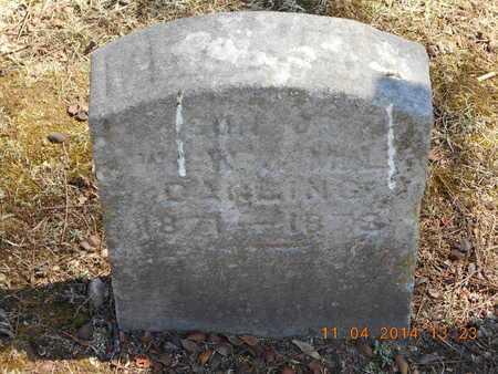 DARLING, FRANCIS - Calhoun County, Michigan | FRANCIS DARLING - Michigan Gravestone Photos