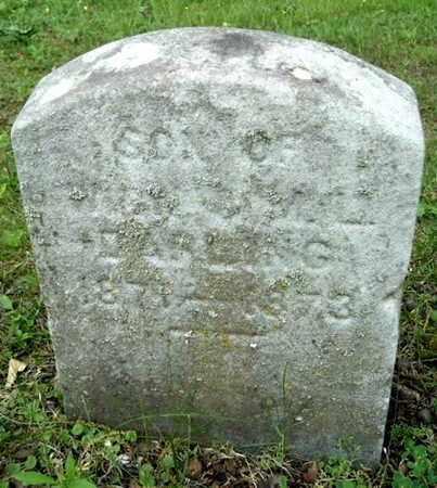 DARLING, FRANKLIN - Calhoun County, Michigan   FRANKLIN DARLING - Michigan Gravestone Photos