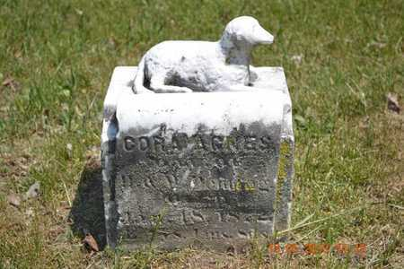 DEMING, CORA AGNES - Calhoun County, Michigan   CORA AGNES DEMING - Michigan Gravestone Photos