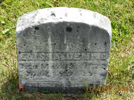 DEMING, ELISHA - Calhoun County, Michigan | ELISHA DEMING - Michigan Gravestone Photos