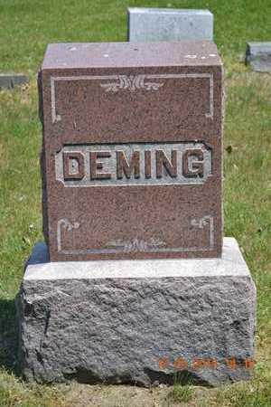 DEMING, FAMILY - Calhoun County, Michigan | FAMILY DEMING - Michigan Gravestone Photos