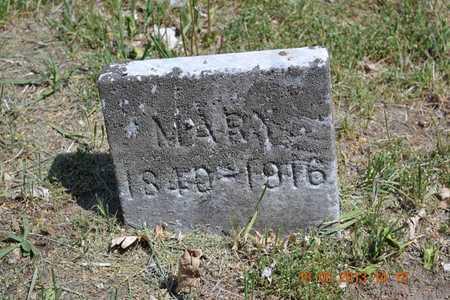 DEMING, MARY - Calhoun County, Michigan   MARY DEMING - Michigan Gravestone Photos