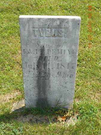 DEMING, TYRUS - Calhoun County, Michigan   TYRUS DEMING - Michigan Gravestone Photos