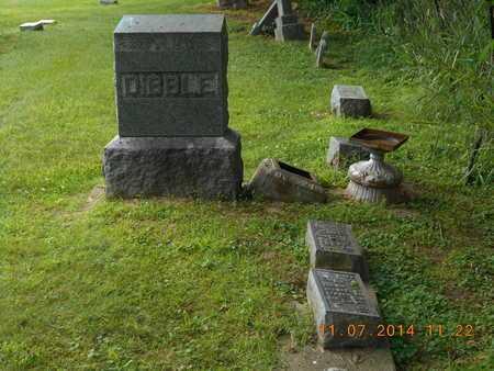 DIBBLE, FAMILY - Calhoun County, Michigan   FAMILY DIBBLE - Michigan Gravestone Photos