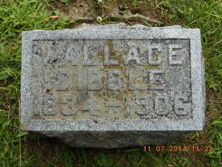 DIBBLE, WALLACE - Calhoun County, Michigan | WALLACE DIBBLE - Michigan Gravestone Photos