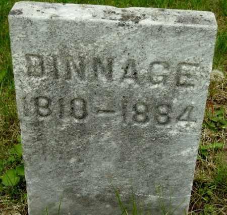 DINNAGE, REBECCA - Calhoun County, Michigan | REBECCA DINNAGE - Michigan Gravestone Photos