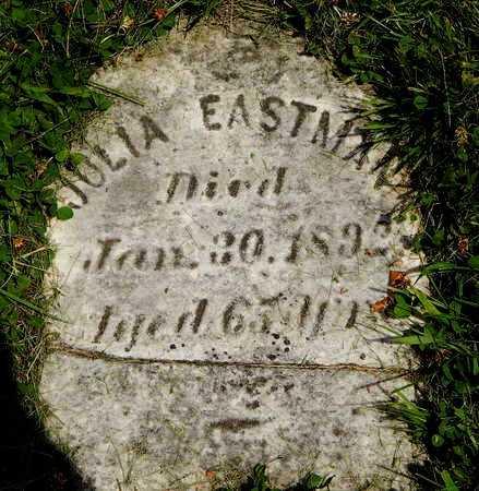 "EASTMAN, JULIETTE ""JULIA"" - Calhoun County, Michigan | JULIETTE ""JULIA"" EASTMAN - Michigan Gravestone Photos"