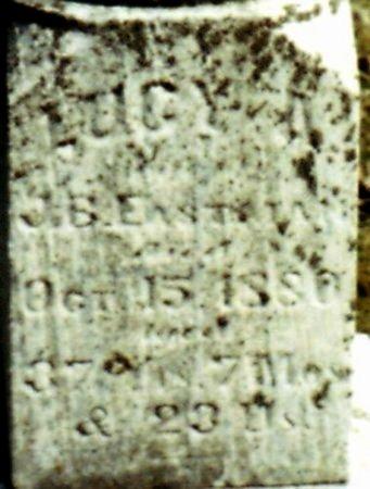 EASTMAN, LUCY - Calhoun County, Michigan | LUCY EASTMAN - Michigan Gravestone Photos