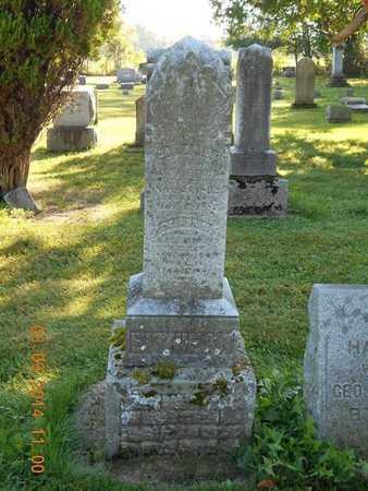 EITNIEAR, FAMILY - Calhoun County, Michigan | FAMILY EITNIEAR - Michigan Gravestone Photos