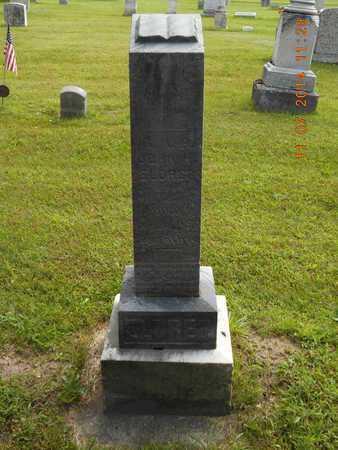 ELDRED, BETSEY - Calhoun County, Michigan | BETSEY ELDRED - Michigan Gravestone Photos