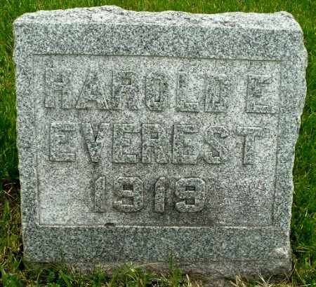 EVEREST, HAROLD E - Calhoun County, Michigan | HAROLD E EVEREST - Michigan Gravestone Photos