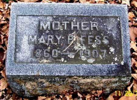 ATKINSON FESS, MARY P - Calhoun County, Michigan   MARY P ATKINSON FESS - Michigan Gravestone Photos