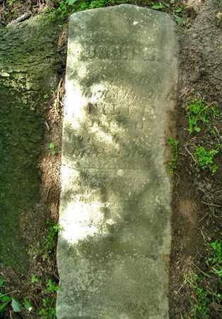FILKIN, JOHN - Calhoun County, Michigan | JOHN FILKIN - Michigan Gravestone Photos