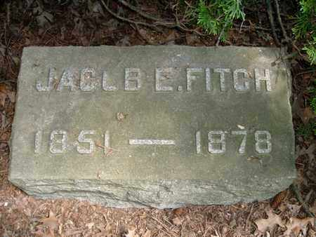 FITCH, JACOB E. - Calhoun County, Michigan | JACOB E. FITCH - Michigan Gravestone Photos