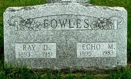 FOWLES, RAY D - Calhoun County, Michigan | RAY D FOWLES - Michigan Gravestone Photos