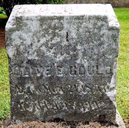 GOULD, OLIVE - Calhoun County, Michigan | OLIVE GOULD - Michigan Gravestone Photos