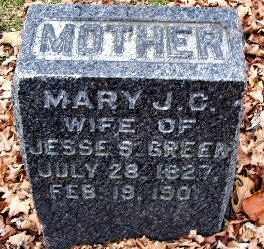 GREEN, MARY JANE - Calhoun County, Michigan | MARY JANE GREEN - Michigan Gravestone Photos