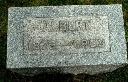 GRILL, ALBERT - Calhoun County, Michigan | ALBERT GRILL - Michigan Gravestone Photos