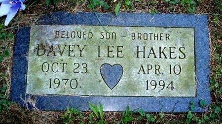 HAKES, DAVEY LEE - Calhoun County, Michigan | DAVEY LEE HAKES - Michigan Gravestone Photos