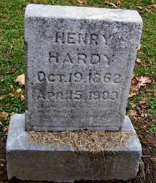 HARDY, HENRY - Calhoun County, Michigan   HENRY HARDY - Michigan Gravestone Photos