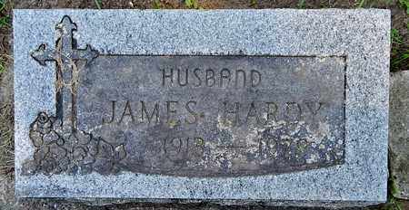HARDY, JAMES - Calhoun County, Michigan | JAMES HARDY - Michigan Gravestone Photos