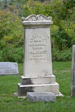 HERRICK, LOUISA L. - Calhoun County, Michigan | LOUISA L. HERRICK - Michigan Gravestone Photos