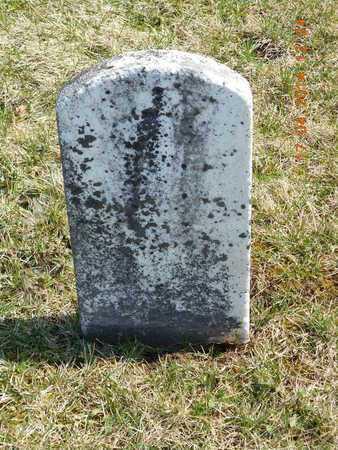 HERRICK, MARY - Calhoun County, Michigan | MARY HERRICK - Michigan Gravestone Photos