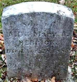 HERRICK, WAINARD - Calhoun County, Michigan   WAINARD HERRICK - Michigan Gravestone Photos
