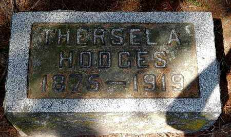 HODGES, THERSEL - Calhoun County, Michigan | THERSEL HODGES - Michigan Gravestone Photos