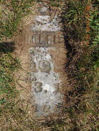 HOLLISTER, AMZE - Calhoun County, Michigan | AMZE HOLLISTER - Michigan Gravestone Photos
