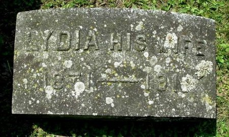 HOLMES, LYDIA - Calhoun County, Michigan | LYDIA HOLMES - Michigan Gravestone Photos