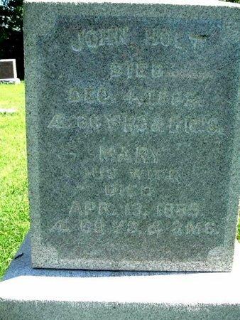 HOLT, MARY - Calhoun County, Michigan | MARY HOLT - Michigan Gravestone Photos
