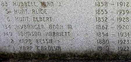 HUNT, ELBERT - Calhoun County, Michigan | ELBERT HUNT - Michigan Gravestone Photos