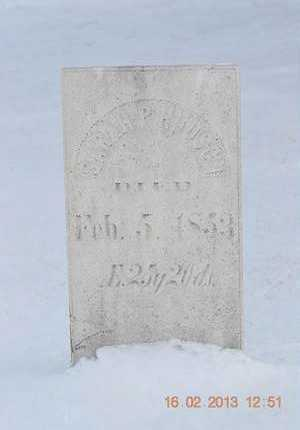 HUDSON, SARAH P. - Calhoun County, Michigan | SARAH P. HUDSON - Michigan Gravestone Photos
