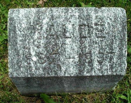 HULCE, MAUDE - Calhoun County, Michigan   MAUDE HULCE - Michigan Gravestone Photos
