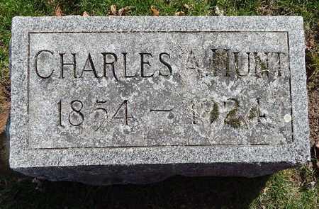 HUNT, CHARLES A - Calhoun County, Michigan | CHARLES A HUNT - Michigan Gravestone Photos