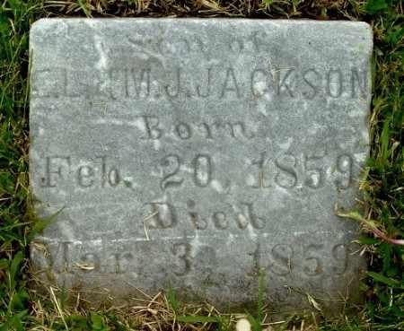 JACKSON, LEON - Calhoun County, Michigan | LEON JACKSON - Michigan Gravestone Photos