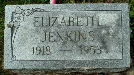 JENKINS, ELIZABETH - Calhoun County, Michigan | ELIZABETH JENKINS - Michigan Gravestone Photos