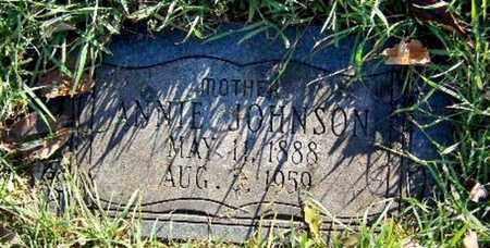 JOHNSON, ANNIE - Calhoun County, Michigan | ANNIE JOHNSON - Michigan Gravestone Photos