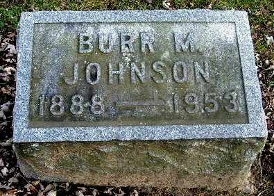 JOHNSON, BURR M - Calhoun County, Michigan | BURR M JOHNSON - Michigan Gravestone Photos