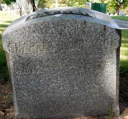 JOHNSON, CHARLES B - Calhoun County, Michigan | CHARLES B JOHNSON - Michigan Gravestone Photos