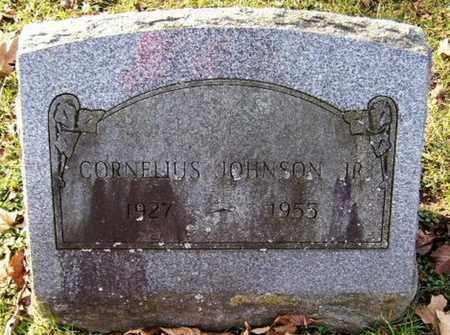 JOHNSON, CORNELIUS JR - Calhoun County, Michigan | CORNELIUS JR JOHNSON - Michigan Gravestone Photos