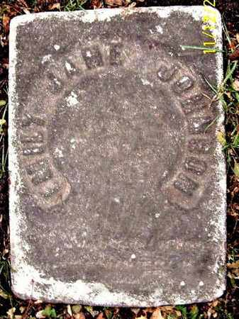 JOHNSON, EMILY JANE - Calhoun County, Michigan   EMILY JANE JOHNSON - Michigan Gravestone Photos