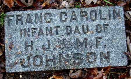 JOHNSON, FRANC CAROLIN - Calhoun County, Michigan | FRANC CAROLIN JOHNSON - Michigan Gravestone Photos
