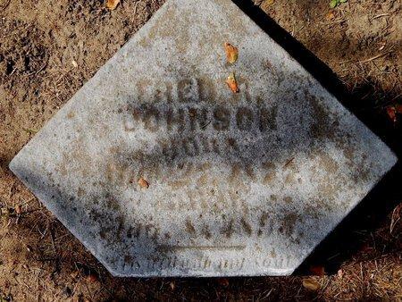 JOHNSON, FRED RUSSELL - Calhoun County, Michigan | FRED RUSSELL JOHNSON - Michigan Gravestone Photos